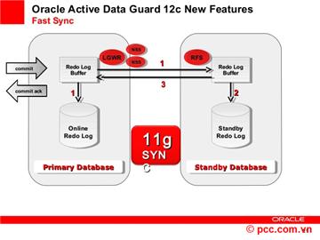 Giải pháp nâng cao tính sẵn sàng cho cơ sở dữ liệu Oracle